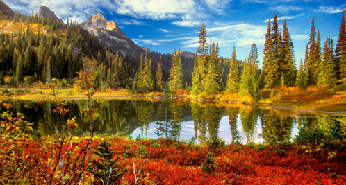 Fall in the Tatoosh Wilderness, Mount Rainier National Park by Don Paulson