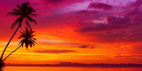 Sunset over the ocean with tropical palm trees