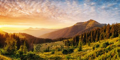 Carpathian national park, Ukraine