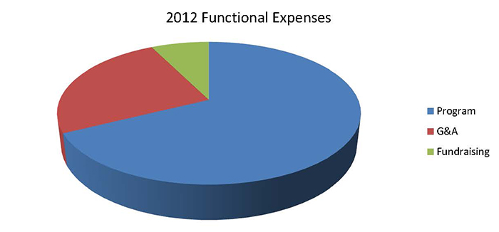 2012 Functional Expenses