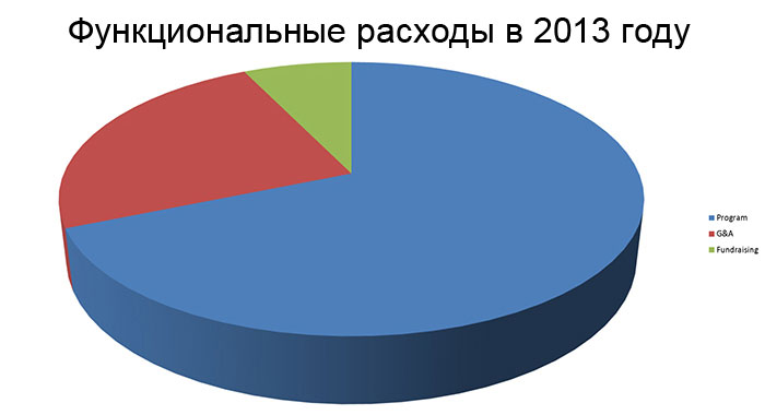 2013 Functional Expenses