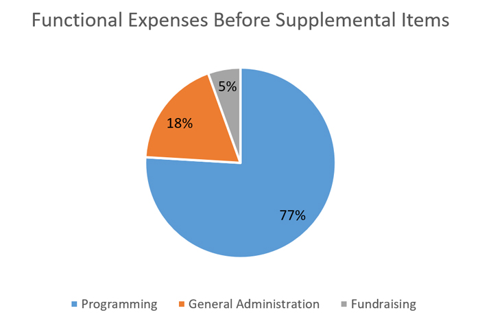2019 Functional Expenses before Supplemental Items