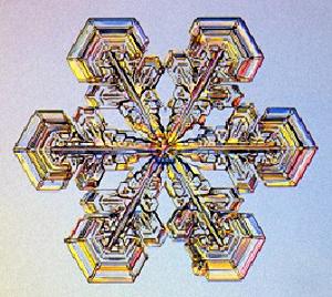 Resultado de imagen de En el mundo inorgánico las leyes de la cristalización del agua congelada